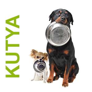 kutya felszerelések állateledel webshop