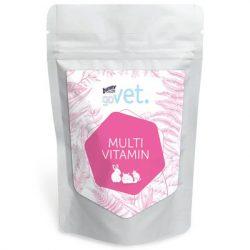 goVet Multi Vitamin 100g