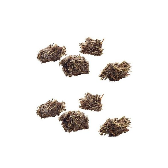 Versele-Laga Nature Snack Bits Parsnip 60g