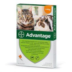 Advantage 40 nyúl/macska spot on 4kg alatt 4x
