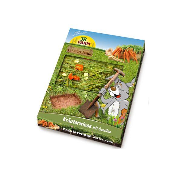 """JR Farm """"egy darab rét"""" zöldségekkel 750g"""