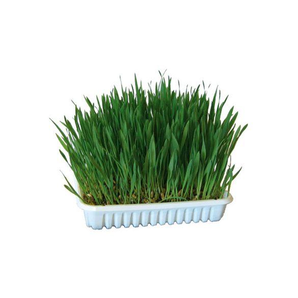 Kerbl rágcsáló fű 100g
