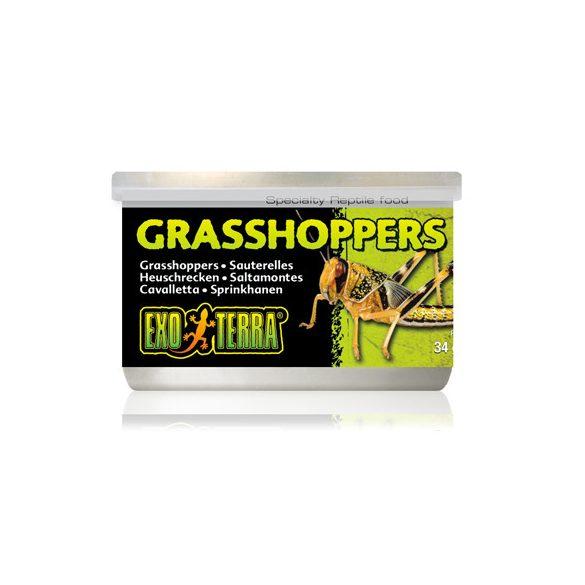 Exo-Terra Grasshopper - Szöcske konzerv 34g