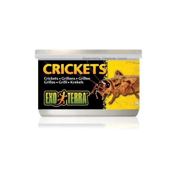Exo-Terra Crickets - Tücsök konzerv 34g