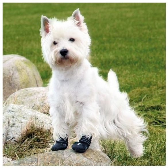 Trixie Walker Active Kutyacipő XS-S