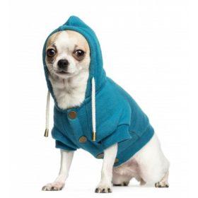 Kutyaruha, kutyacipő