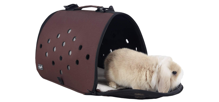 biztonságos kisállat szállítóbox állathordozó