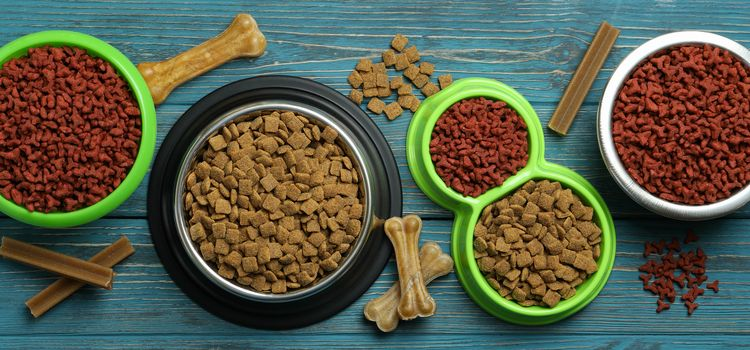 egészséges állateledel bolt rendelés kedvencei számára