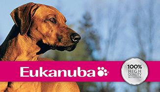 Eukanuba kutya