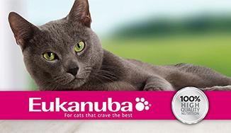 Eukanuba macska